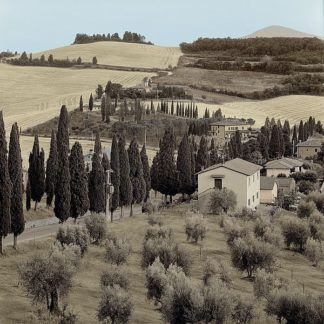 ABITC2887 - Blaustein, Alan - Tuscany #15