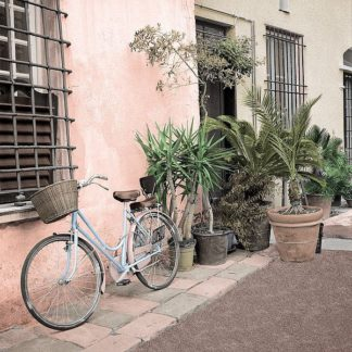 ABITC5088 - Blaustein, Alan - Liguria Bicycle #2