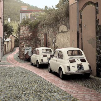 ABITC5090 - Blaustein, Alan - Fiat 500s