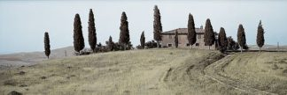 ABITH25C - Blaustein, Alan - Val d'Orcia Pano #1