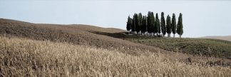 ABITH26C - Blaustein, Alan - Val d'Orcia Pano #3