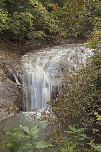 ABJPD0114 - Blaustein, Alan - Hokkaido Waterfall #2