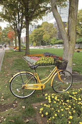 ABJPD0274 - Blaustein, Alan - Japan Bicycle #2