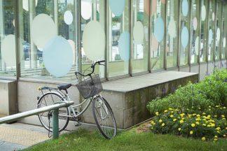 ABJPD0278 - Blaustein, Alan - Japan Bicycle #3