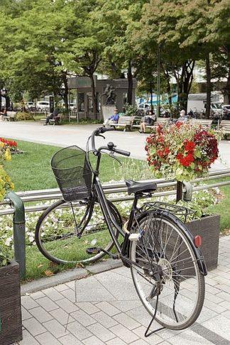 ABJPD0292 - Blaustein, Alan - Japan Bicycle #5
