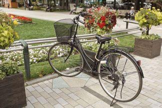 ABJPD0297 - Blaustein, Alan - Japan Bicycle #6