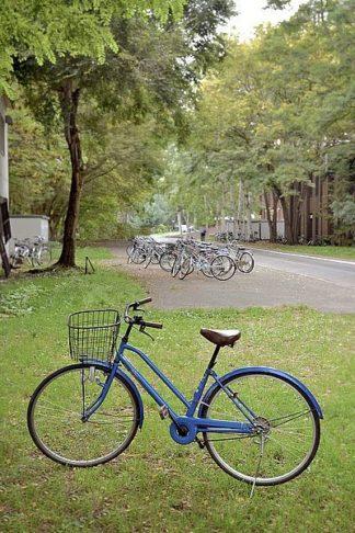 ABJPD0403 - Blaustein, Alan - Japan Bicycle #8