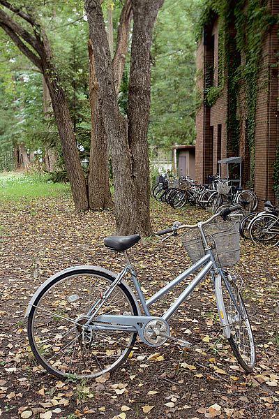 ABJPD0412 - Blaustein, Alan - Japan Bicycle #9