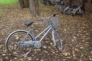 ABJPD0425 - Blaustein, Alan - Japan Bicycle #10