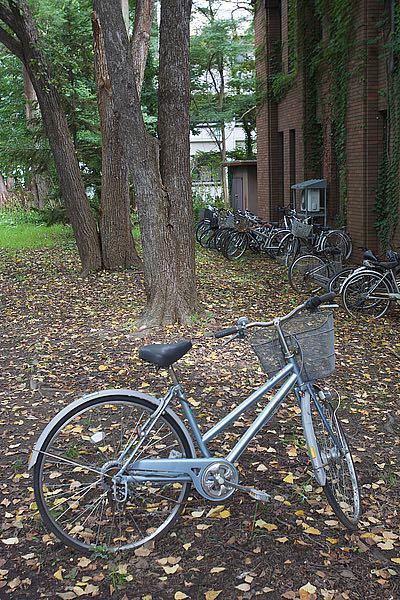ABJPD0429 - Blaustein, Alan - Japan Bicycle #11
