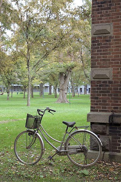 ABJPD0482 - Blaustein, Alan - Japan Bicycle #13