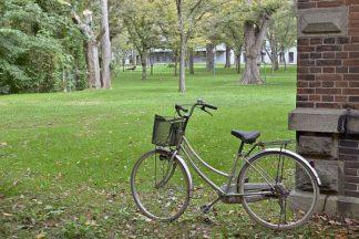 ABJPD0490 - Blaustein, Alan - Japan Bicycle #14