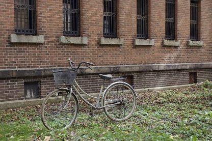 ABJPD0521 - Blaustein, Alan - Japan Bicycle #17