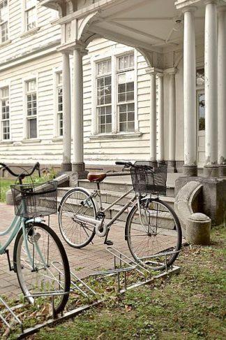 ABJPD0564 - Blaustein, Alan - Japan Bicycle #19