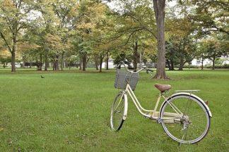 ABJPD0598 - Blaustein, Alan - Japan Bicycle #21