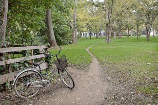 ABJPD0623 - Blaustein, Alan - Japan Bicycle #23