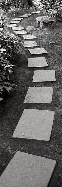 ABJPV01 - Blaustein, Alan - Japanese Garden #1