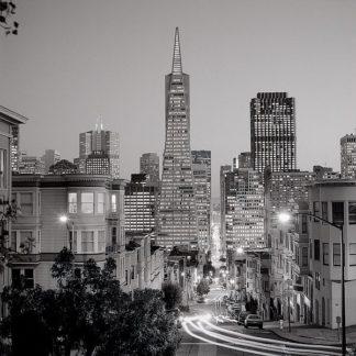 ABSF24 - Blaustein, Alan - San Francisco Skyline #1