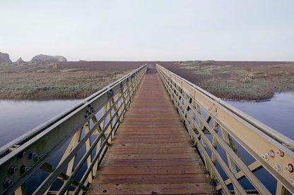 ABSFH205 - Blaustein, Alan - Lagoon Bridge #1