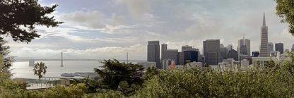 ABSFH264 - Blaustein, Alan - SF Skyline Pano #109