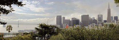 ABSFH264A - Blaustein, Alan - SF Skyline Pano #110