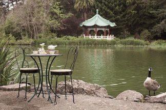 ABSFH342A - Blaustein, Alan - Dream Cafe Stow Lake #47