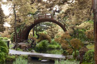 ABSFH366 - Blaustein, Alan - Japanese Bridge #1