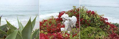 ABSPT001 - Blaustein, Alan - Laguna Coast #3