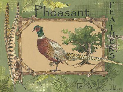 AP005 - Phillips, Anita - Pheasant