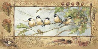 AP010 - Phillips, Anita - Chickadee