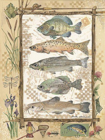 AP012 - Phillips, Anita - Fish Sampler