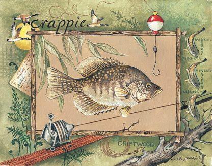 AP064 - Phillips, Anita - Crappie