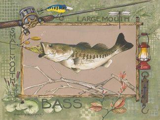 AP066 - Phillips, Anita - Large Mouth Bass
