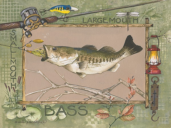 Large Mouth Bass Image Conscious
