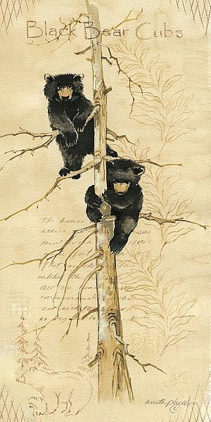 AP1318 - Phillips, Anita - Black Bears Cubs