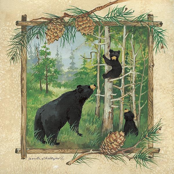 AP1321 - Phillips, Anita - Bears Family