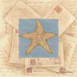 AP1330 - Phillips, Anita - Starfish Postcard I