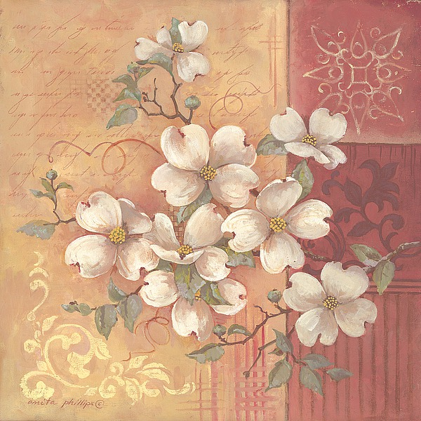AP1615 - Phillips, Anita - Beautiful Magnolias
