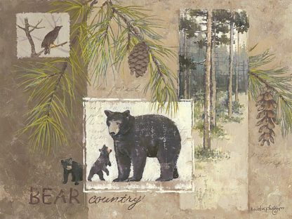 AP1618 - Phillips, Anita - Bear Country
