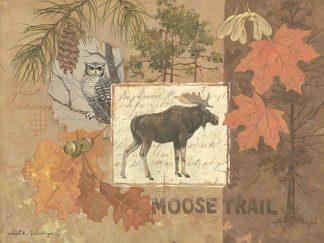 AP1620 - Phillips, Anita - Moose Trail