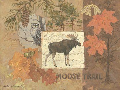 AP1620 - Phillips, Anita - Moose Trail