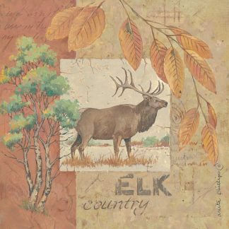 AP1622 - Phillips, Anita - Deer / Elk Country