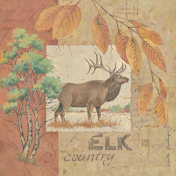 AP1622 - Phillips, Anita - Deer / Elk Country