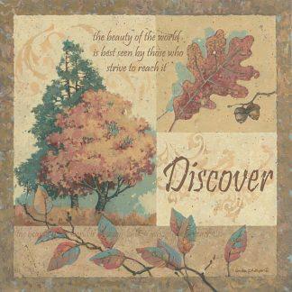 AP1683 - Phillips, Anita - Discover