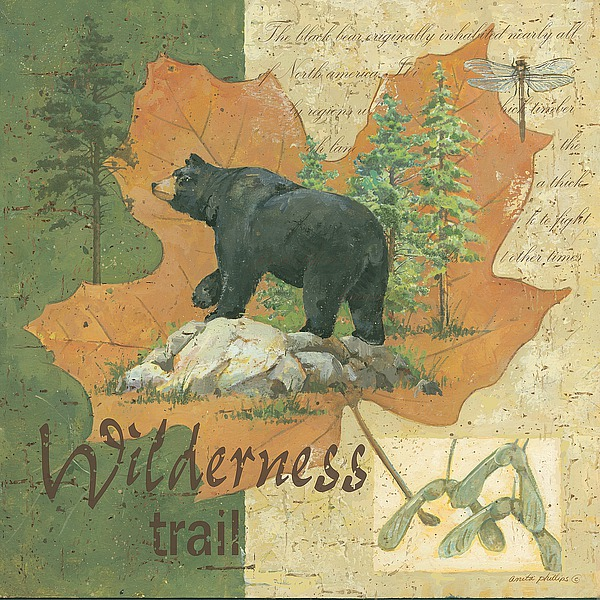 AP1691 - Phillips, Anita - Wilderness Bear