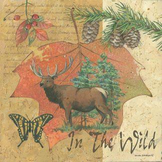 AP1692 - Phillips, Anita - Wild Elk