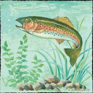 AP1749 - Phillips, Anita - Trout Swimming