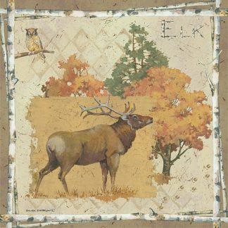 AP1904 - Phillips, Anita - Elk Country