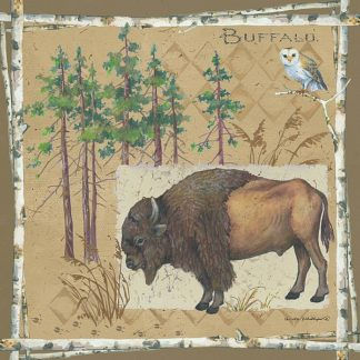 AP1913 - Phillips, Anita - Bison / Buffalo