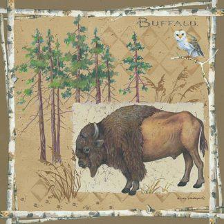 AP1913 - Phillips, Anita - Bison / Buffalo